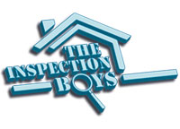 The Inspection Boys